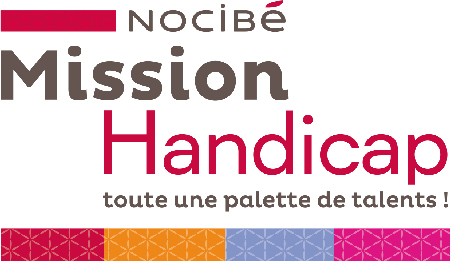 logo-mission-handi-rectangulaire
